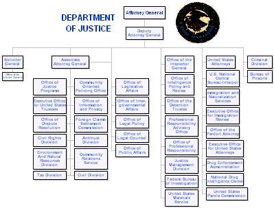 free sample organizational chart template